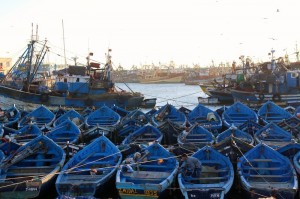 The blue boats in Essaouira harbour
