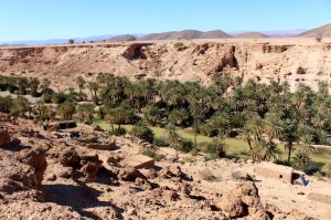 The oasis below, with houses and animal pens