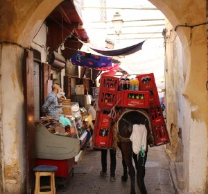 Donkeys are the only traffic allowed in the Fes medina