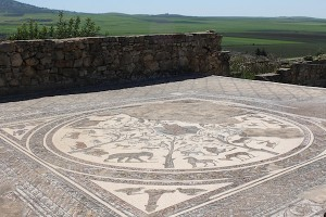 Volubilis mosiac floor