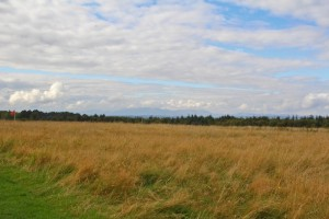 Sometimes history is made in the most unassuming places - Culloden field