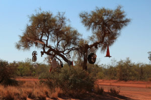 A little bit of trucker road art on the Tanami Track