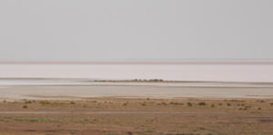 Lake Eyre South - where Donald Campbell secured the world land speed record