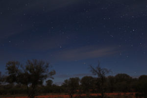 Speckled stars on a moonlit night in the outback