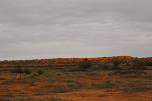 The Red Hills of the Oodnadatta Track