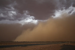 The line on the horizon are full-grown gum trees, dwarfed by the storm